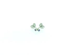 Edelstalen zweerknopjes, blauwe steen zilver-kleurig 'klein'