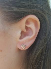 Zilveren oorstekers drie sterren