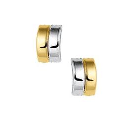Gouden oorknopjes dubbele streep