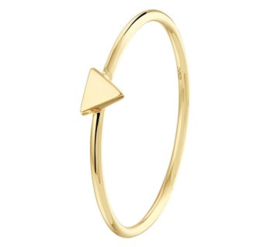 Gouden ring driehoek