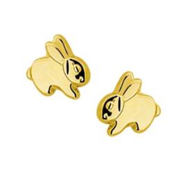 Gouden oorknopjes konijn