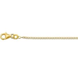Gouden lengteketting gourmet 50 cm