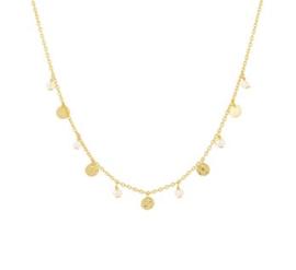 Goud op zilver collier parels/coins