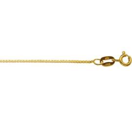 Gouden lengteketting 38 cm