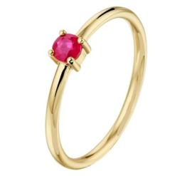 Gouden ring robijn