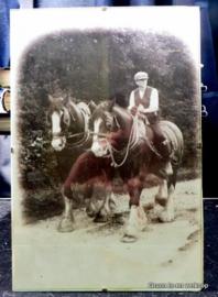 Nostalgische ingelijste Shire Horses