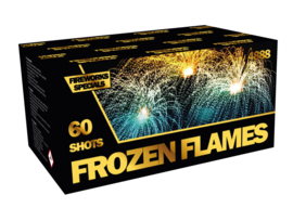 FROZEN FLAMES