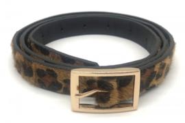 Riem Leopard