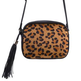 The icon leopard   Bruin