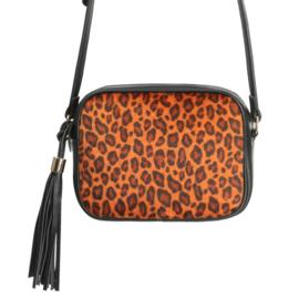 The icon leopard | Oranje