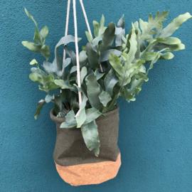 Plantenhanger Jute Kurk Green L