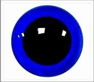 1 paar 10 mm ogen signaal blauw