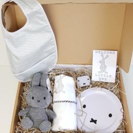 A Lovely Baby Box Grey Miffy - Nijntje