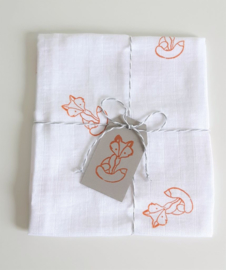 A Lovely Baby Box Smart Fox - Vos