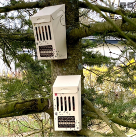 DIY Bijenhotel - Bloom & Bijenstichting