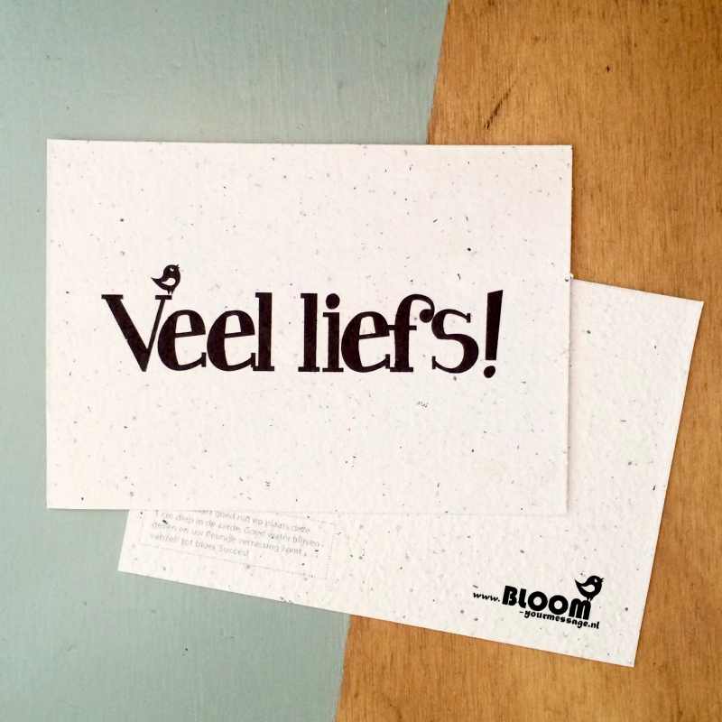 "Bloeikaart van BLOOM your message ""Veel liefs"""