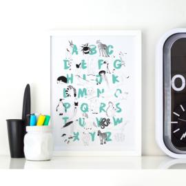 Alfabet poster aquamarijn