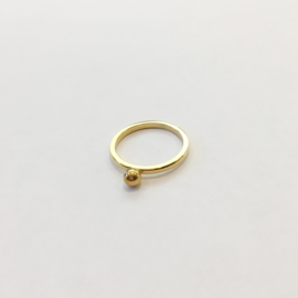 Ring dot goud of zilver