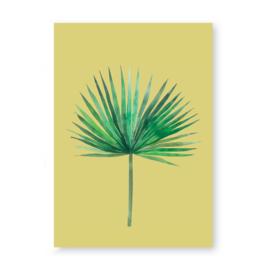 Beach palm leaf
