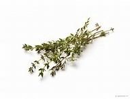 Tijm, gele (Thymus vulgaris ct. carvacrol) - bio - 5 ml