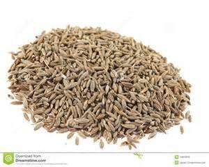Karwij - zaad (Carum carvi - semen) - bio - 5 ml
