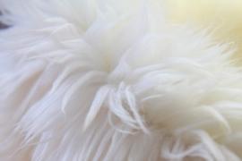 Prachtige witte vacht met gouden glans