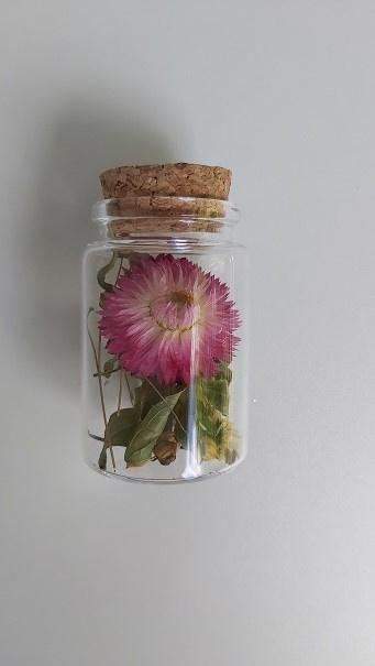 Flesje droogbloemen