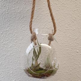 Kleine vaas met touw + Caput medusae/argentea