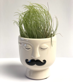 Magneethouder Mr Moustache  met andreana xl