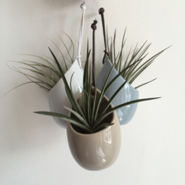 Hangpotje grijs incl. airplant