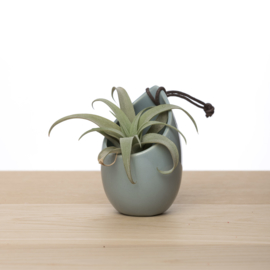 Hangpotje grijs incl. airplant