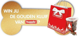 Hupple X-Mas Gift Bag