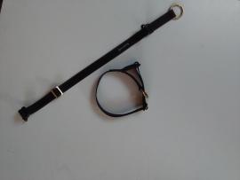 Halsband steekslot  met veiligheid eco line , 15 mm, 20mm , 25 mm ,