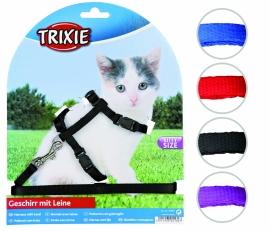 Trixie harnas, kitten met looplijn.