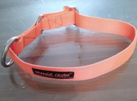 Orange crush , kennelhalsband
