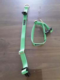 Neon halsband met veiligheidsslot, 25 mm