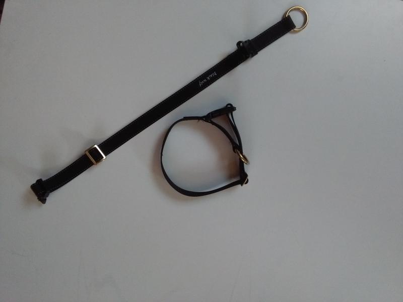 Halsband steekslot  met veiligheid Black Wolf , 15 mm, 20mm , 25 mm ,