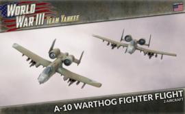 A-10 Warthog Fighter Flight (Plastic)