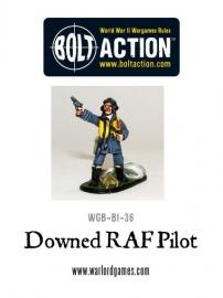 Downed RAF Pilot