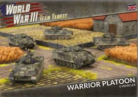 PRE ORDER: Warrior Platoon (Plastic)