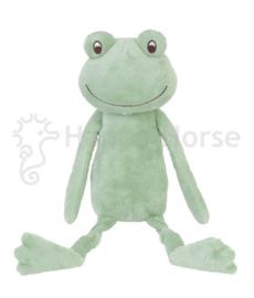Frog Flavio no. 2
