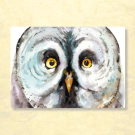 Veer Illustratie - Uil