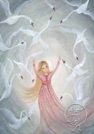 BijdeHansje - Swans