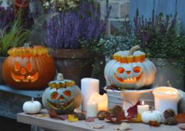 Flora Press  - Halloween decoratie