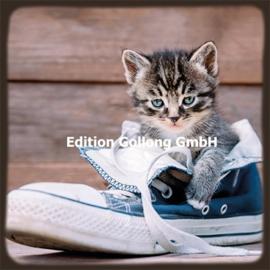 Poprotskiy Alexey  - Kat in schoen