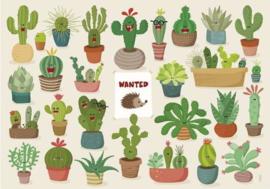Lali - Cactus