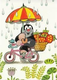Het molletje - Op de fiets door de regen