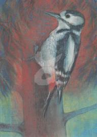 Loes Botman - Klein Vogelboek 1
