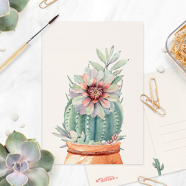 Studio Draak - 'Petites plantjes'  Versie : Kleipot kiezels