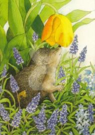 Inge Löök : Egel tussen hyacinten - NR 117